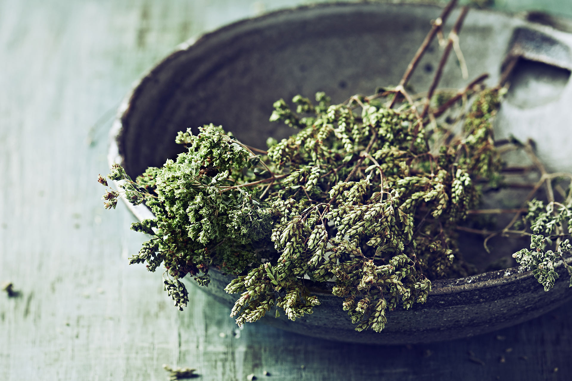 Wild Herbs and Spices